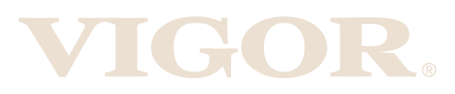 Vigor - Restaurant Branding & Restaurant Marketing Agency