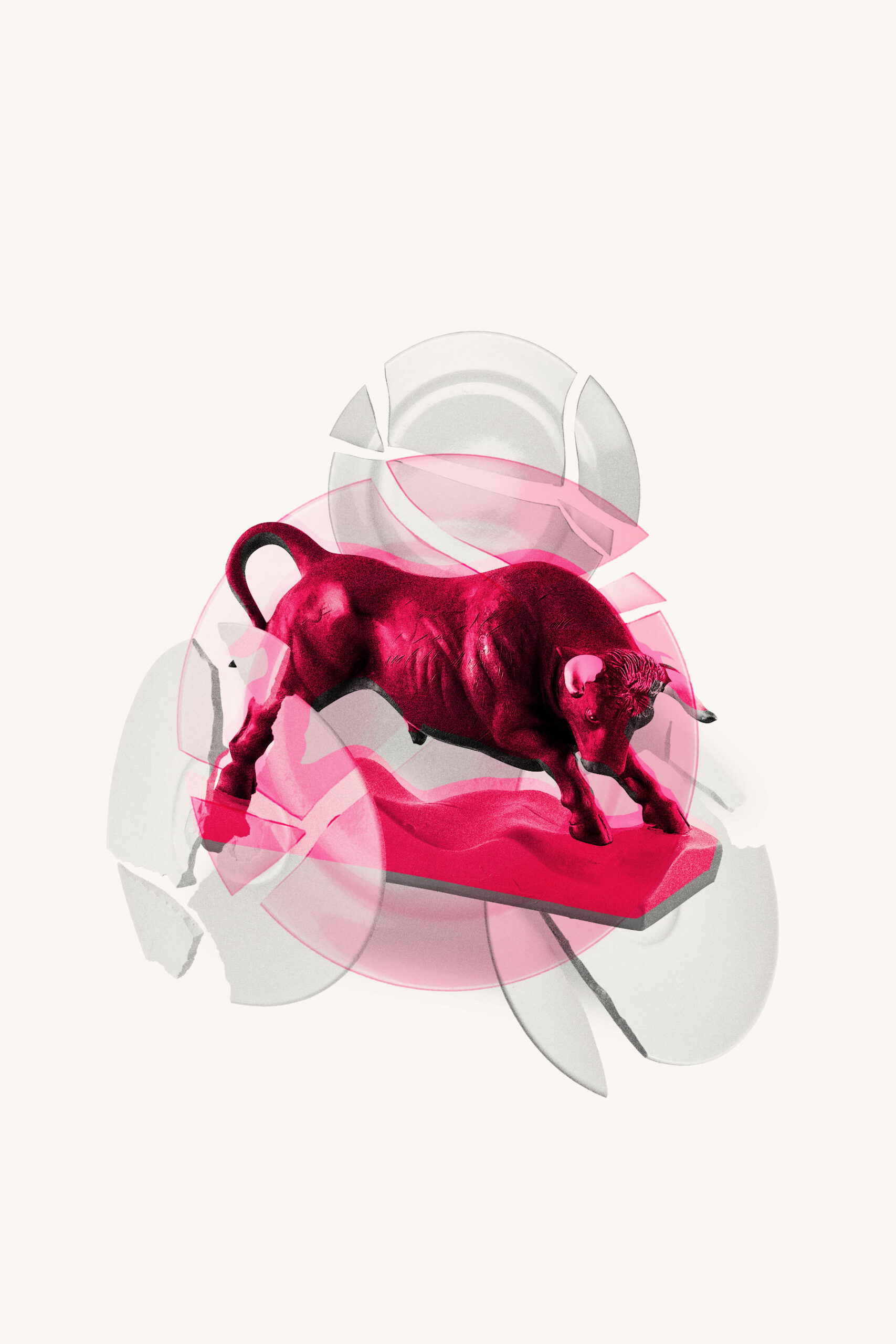 A Bull in a China Shop - Branding Lesson