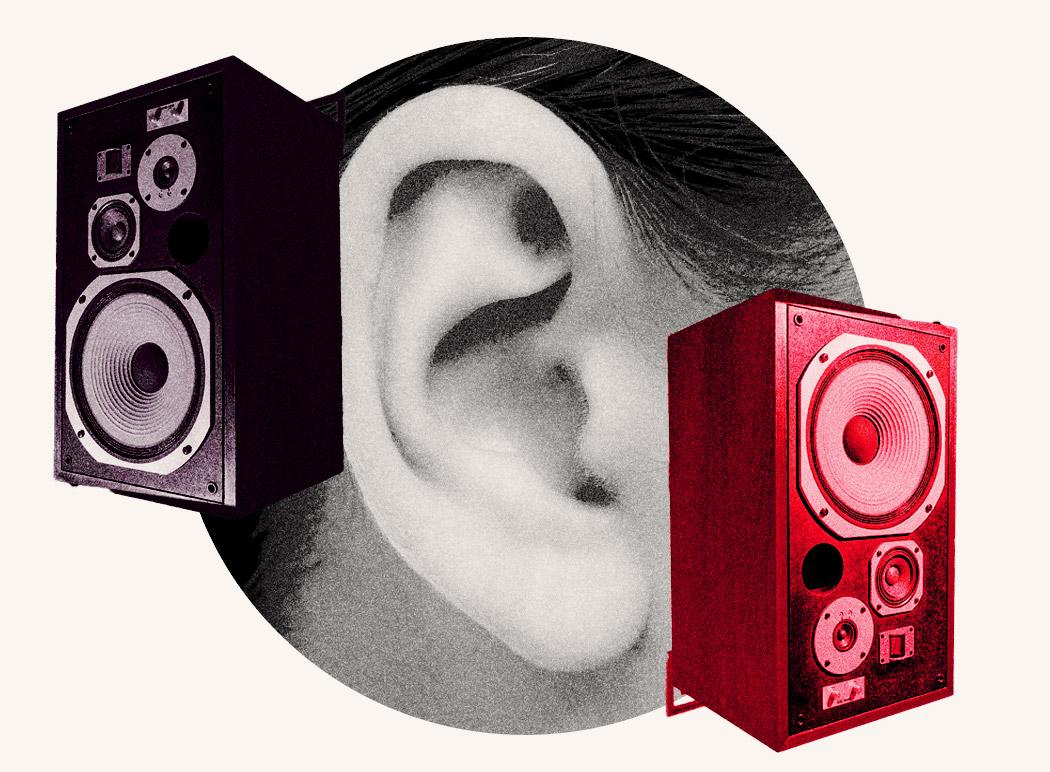 The Bullhearted Brand - Audiobook